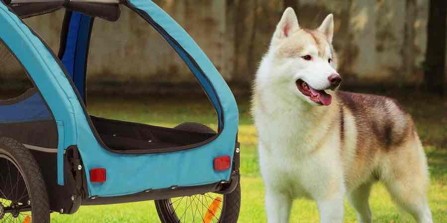 remolque de bicicleta para perros, amazon remolque bici, remolque bicicleta para perros, remolque carga bicicleta