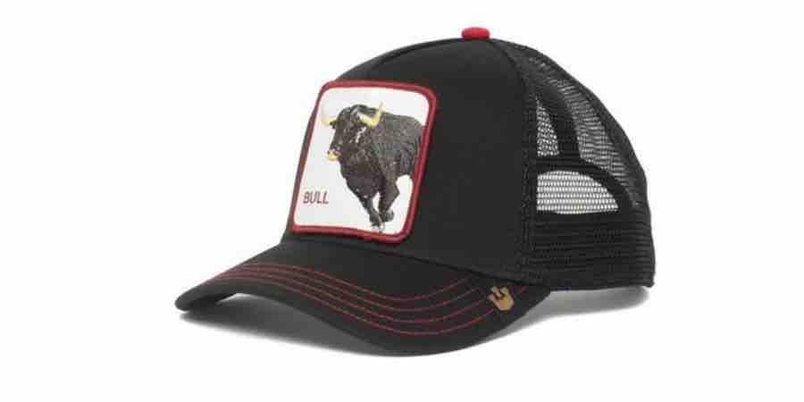Comprar gorras de animales amazon, gorras animales baratas, gorras gorrín bros, gorras con dibujos de animales, gorras en amazon