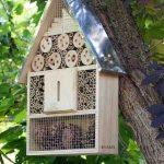 comprar casa para insectos